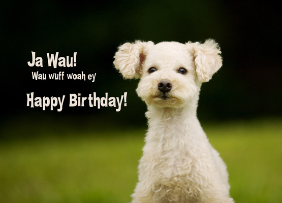 Ja wau! wuff woa ey! Happy Birthday! - pokamax