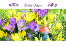 frohe ostern - Ostern