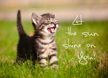 Let the sun shine on You! - Aufmunterung